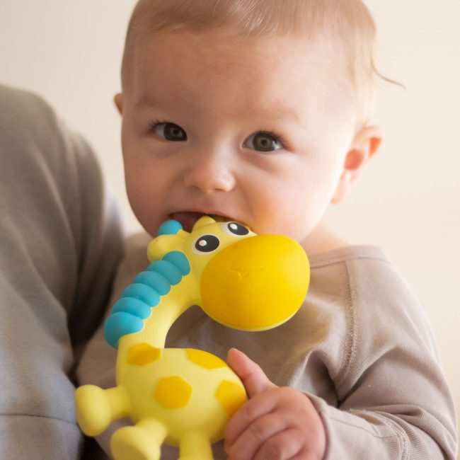 0186970-Squeak-and-Soothe-Natural-Teether-T3