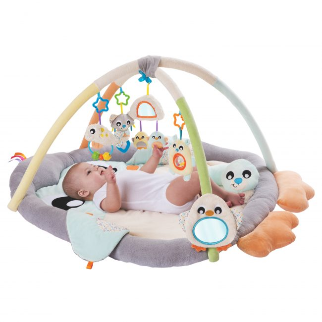 018768178 Snuggle Me Penguin Tummy Time Gym PVC T1 (RGB)